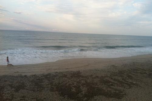 Ocean's Run