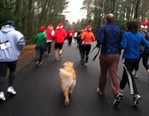 All I Want for Christmas 5K