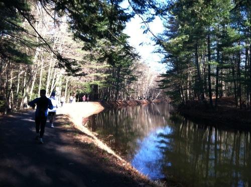 Wolf Hollow Half Marathon